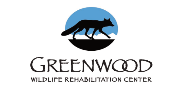 Greenwood Wildlife Rehabilitation Center, Recommended by The Animal Doctor, Broomfield, CO
